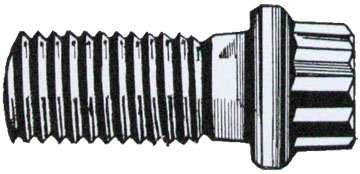 12 point flange screws